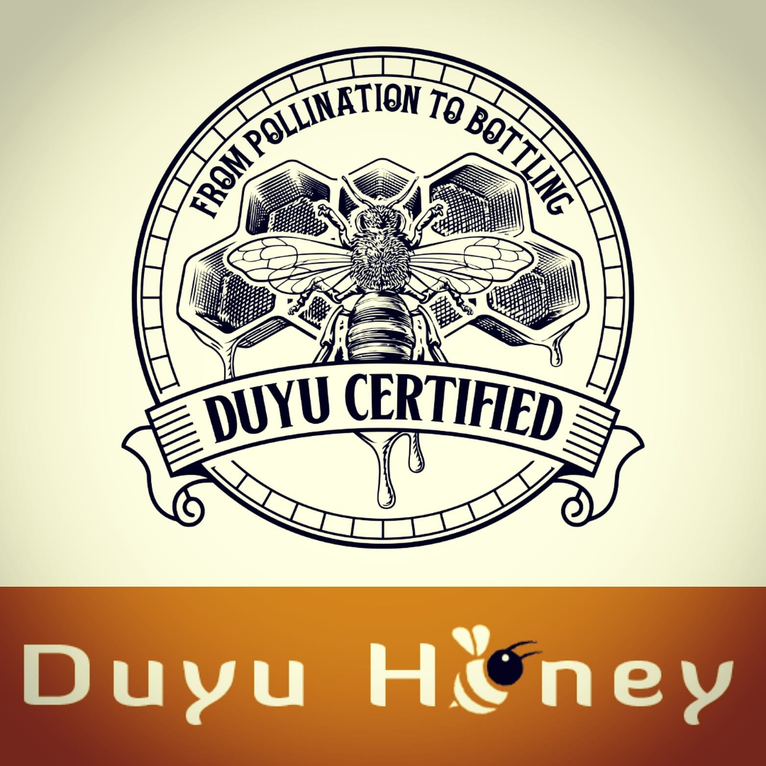 DUYU Honey Brand Identity